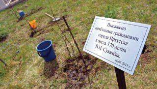 Усадьба В.П. Сукачева