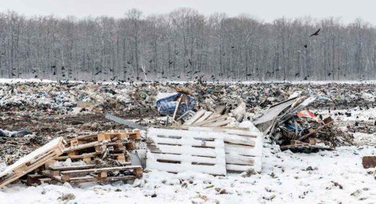 Власти Томской области ищут еще одного «мусорного» оператора