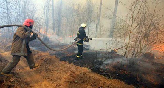 Пожары погорели на отчетах