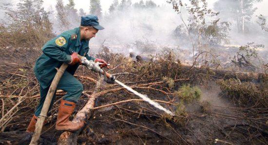 В пожарном беспорядке